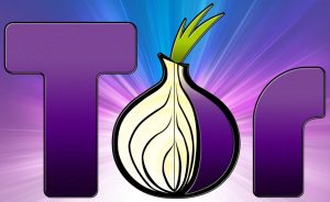 tor_browser_logo